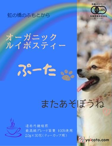 虹の橋ぷーた2